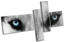 Wolf Eyes Wild Animals - 13-0904(00B)-MP13-LO